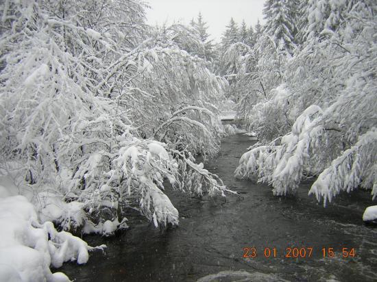 La vézère en hiver auteur l.g.