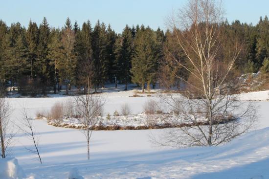 Plan d'eau des Trois ponts gelé février 2012 auteur g.o.