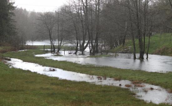 Ruisseau des Rochers et Vézère crue 24-04-2012 - auteur g.o.